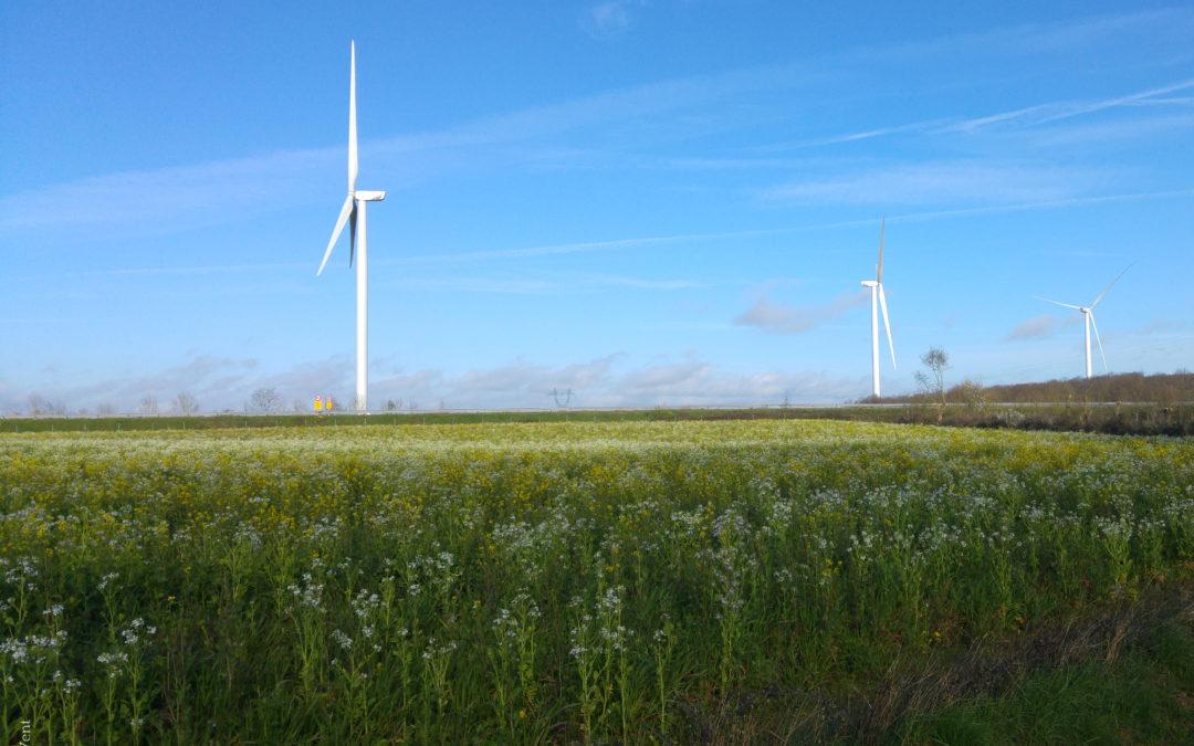 Une offre d'électricité Mauges 100 % locale et renouvelable