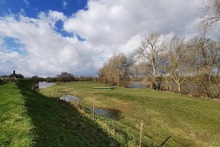 Inventaires faune-flore sur la digue de Mauges-sur-Loire